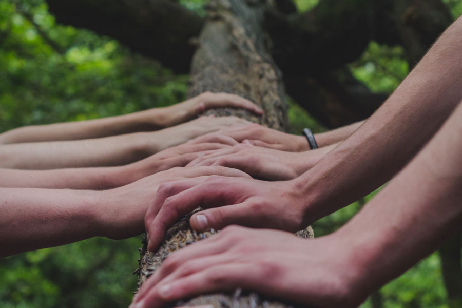 Ein Team von Experten verschieben einen Baumstamm als Symbol für das Unternehmen